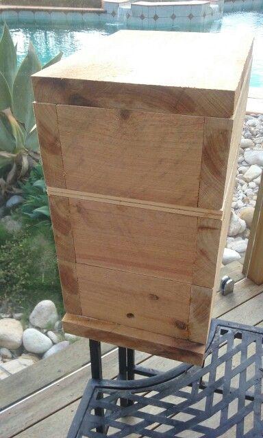 Cypress Pine Native Beehive