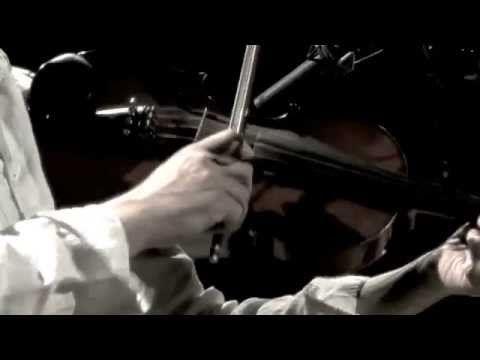 muzykanci | kare konie / cztery konie rysie - YouTube