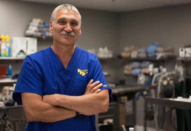 Dr. Jeff: Rocky Mountain Vet | Animal Planet