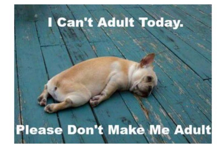 How I feel today!