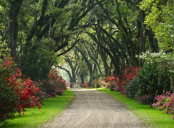 Afton Villa Gardens, St. Francisville Louisiana #plantations