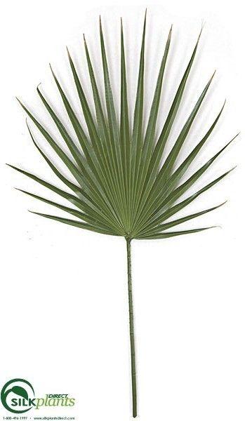 Washingtonia Palm Spray - Green - Pack of 1