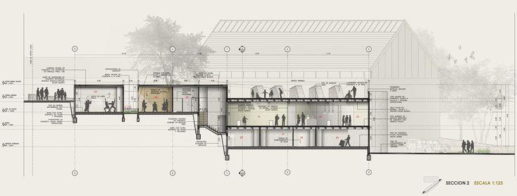 Galería de Primer Lugar en Concurso Casa de la Cultura de Nuevo Gramalote / Colombia - 23