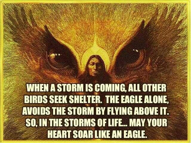 Native American Wisdom Stories | Pinned by Debbie Ballard