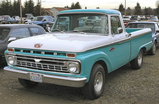 1966...if I could have my own pickup...this would be it.