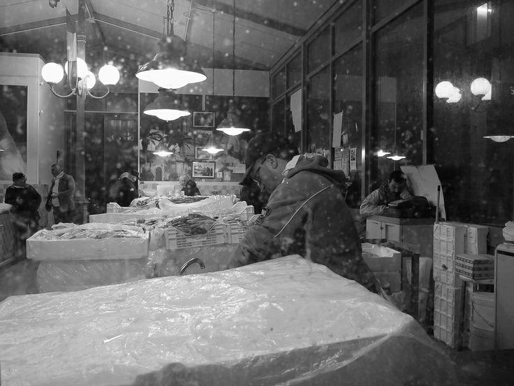 #Mazaradelvallo #fishmarket #job #fish