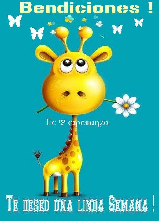 103 best Bendecida Semana images on Pinterest | Happy ... Good Morning Happy Monday Quotes
