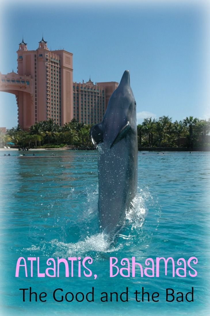 Atlantis Bahamas reviews -- I'll show you the pros and the cons, the good and the bad about the Atlantis Resort in the Bahamas.