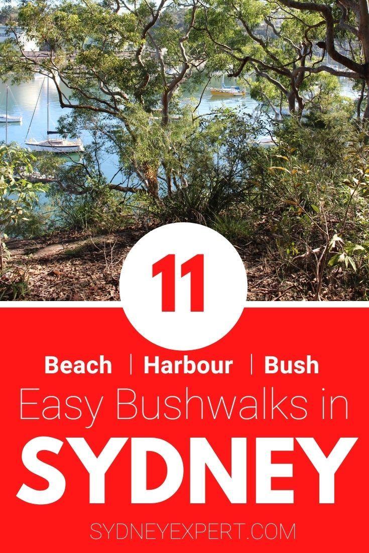 Easy Bushwalks In Sydney For The Whole Family In 2020 Australia Travel Australian Travel New Zealand Travel