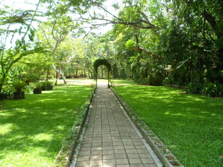 Helai Namonamo: Port Moresby's Botanical Gardens Nature Park. The ideal place to visit when in Port Moresby