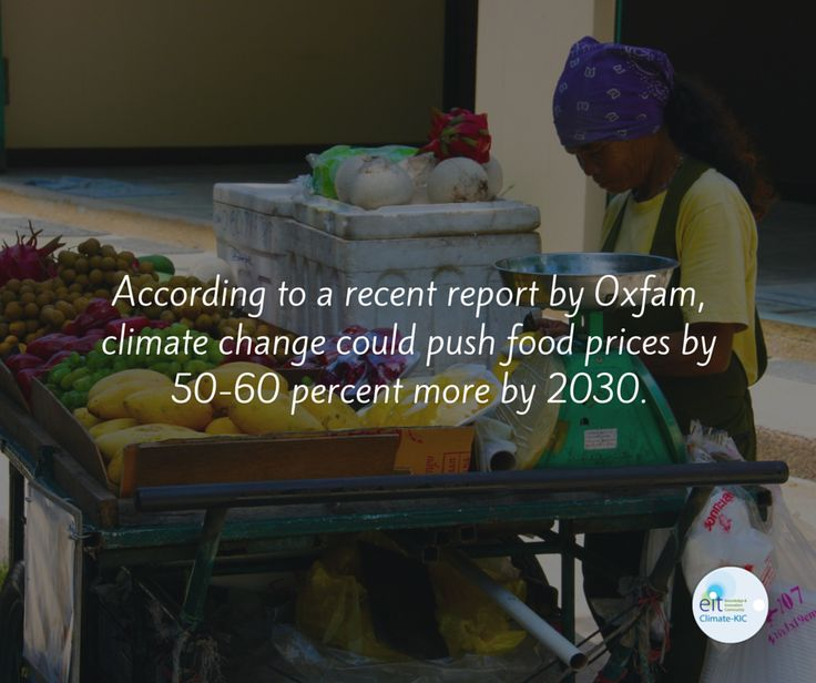 More expensive food = More hunger (at least in developing and under developed countries). #climatechange