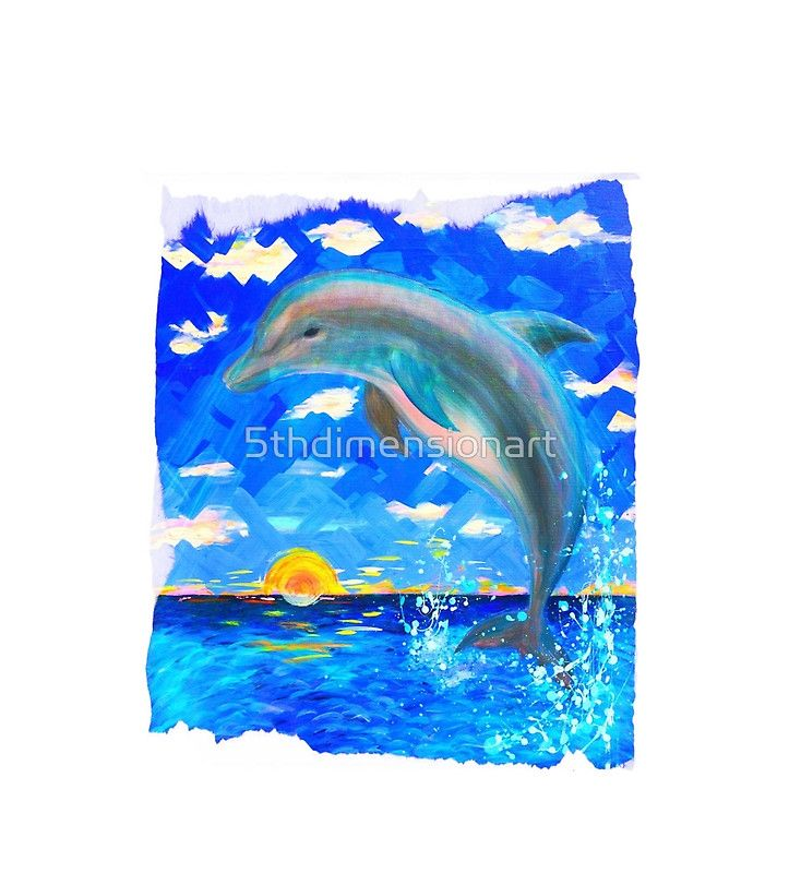 Baby Dolphin Radiant Sunrise