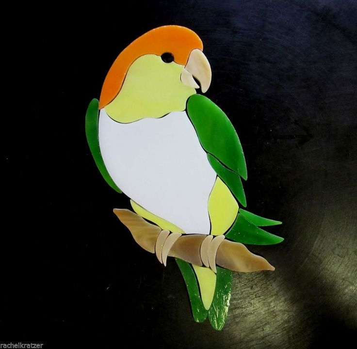 WHITE BELLIED CAIQUE PARROT Precut Stained Glass Kit Mosaic Inlay Stepping Stone #RachelKratzer