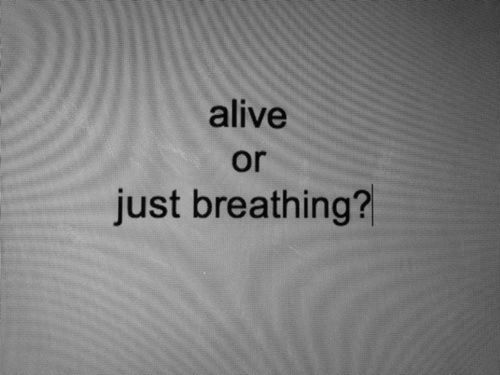 Most everyone I know are just breathing...such a shame, life is too short! Do something already, for fuck sake!
