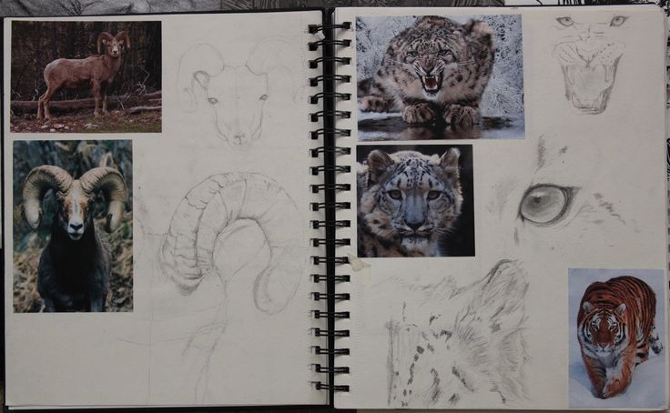 Initial Sketches for College Meffan Project. A4