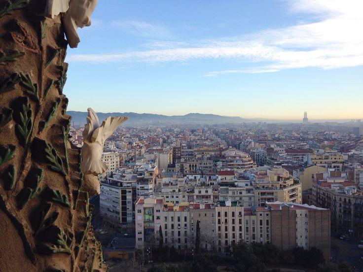 サグラダファミリアからの景色 #Spain #Balcerona