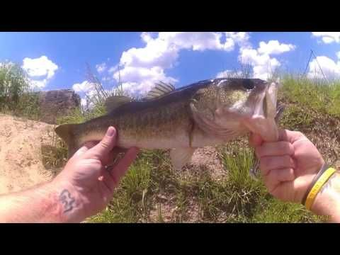 SWFL canal fishing for bass. Big EZ lure - (More info on: https://1-W-W.COM/fishing/swfl-canal-fishing-for-bass-big-ez-lure/)