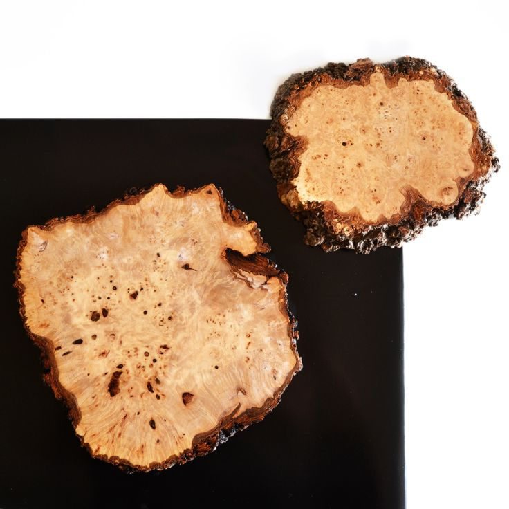 Board out of a burl!