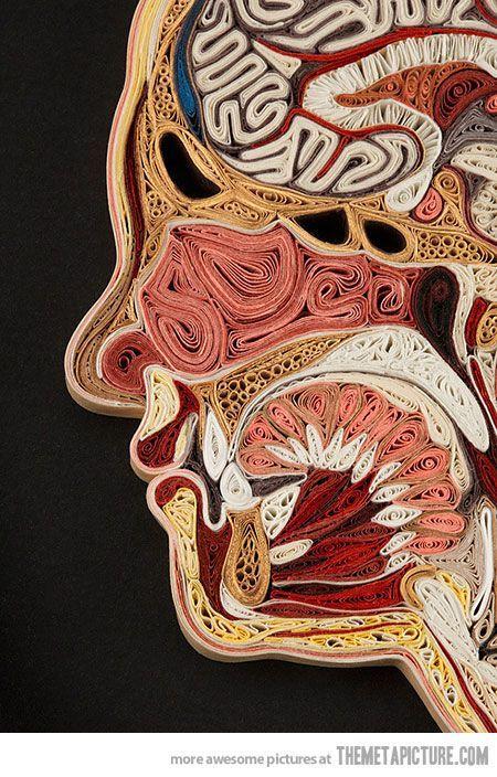 fun high school art projects | funny paper art - human anatomy | high school art lessons