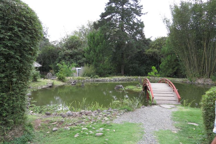 Jardin botanico lankester cartago costarica botanic for Jardin lankester