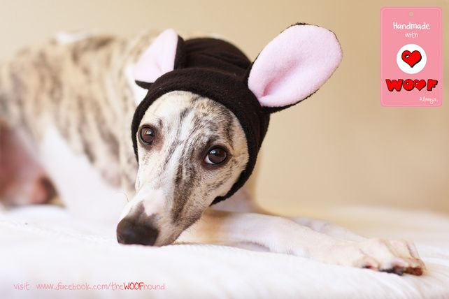 Dog+SNOOD+with+mouse+ears £12.50
