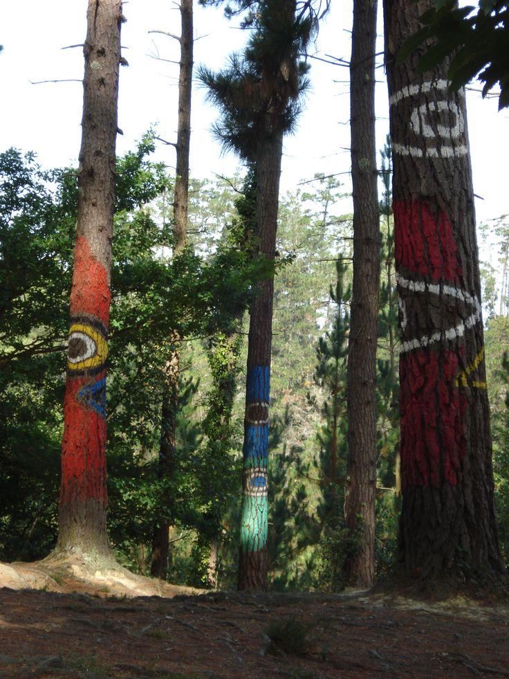 Bosque de Oma, Bizkaia