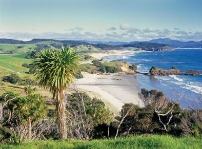 #84 - Matakana Coast - 101 Must-Do's for Kiwis. View the full list at www.aatravel.co.nz/101