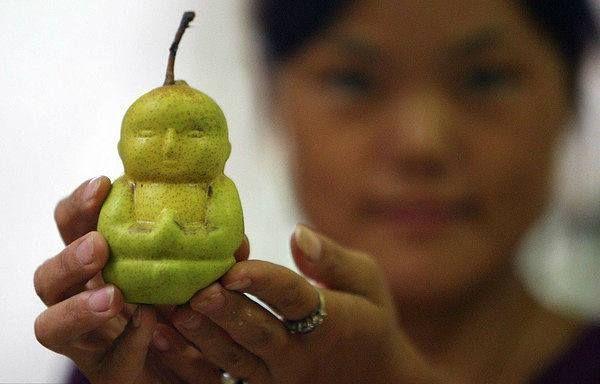Хао Xianzhang, китайский фермер, придумал новый способ выращивания необычных груш. Плоды этих чудо груш имеют форму Будды.  Для достижения такого эффекта он использует индивидуальные пластиковые формы, внутри которой и растёт каждая груша. Хао Xianzhang потратил шесть лет, чтобы вырастить такие груши, и теперь он планирует поставлять их в Европу. Китайцы считают, что они приносят удачу