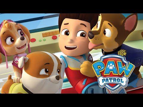 Patrulha Canina - Salvamento Animal (Nickjr - Paw Patrol English version) - YouTube
