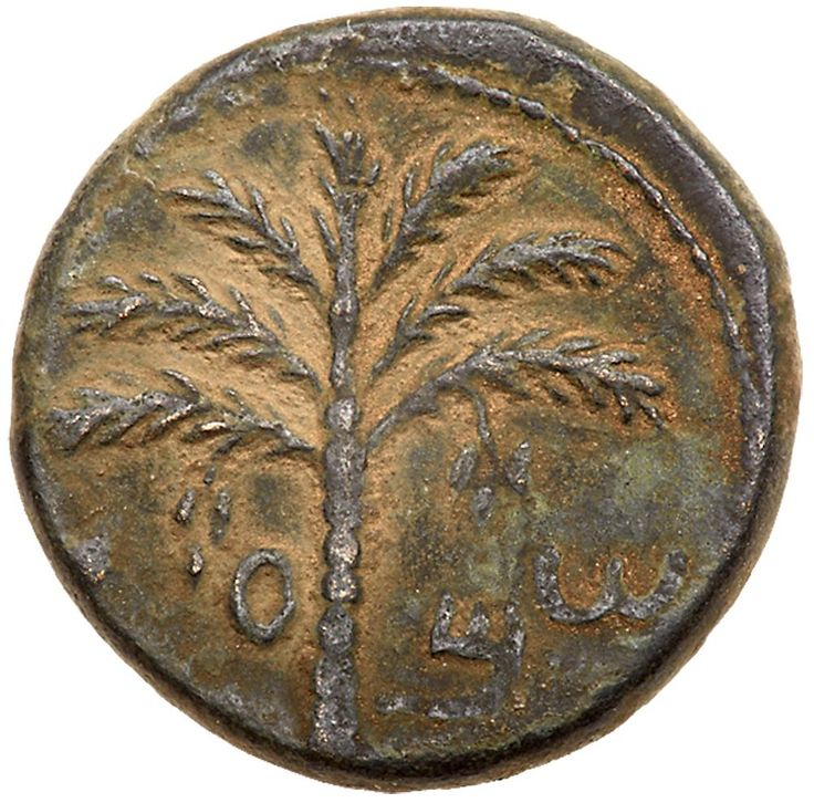 Judaea, Bar Kokhba Revolt. AE Medium Bronze (10.18 g), 132-135 CE Choice VF Undated, attributed to year 3 (134/5 CE). 'Simon' (Paleo-Hebrew), seven-branched palm tree with two bunches of dates. 'For the freedom of Jerusalem' (Paleo-Hebrew), vine leaf on tendril. Mildenberg 139 (O11/R103); TJC 289. Earthen brown patina. The Brody Family Collection; Purchased privately in Israel, August 2001. #Coins #Ancient #Judaea #MADonC