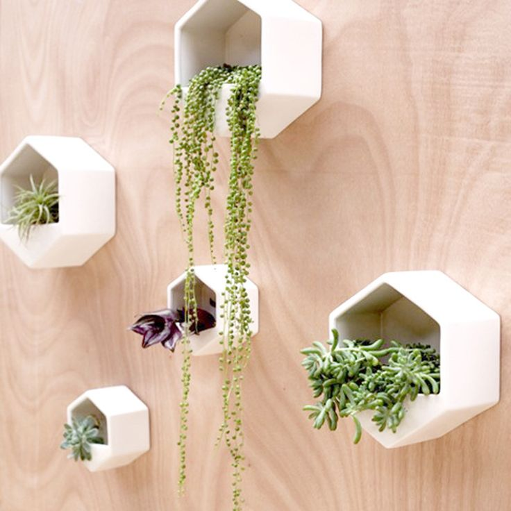 Hexagon Wall Planter. 195 best decor items images on Pinterest   Great deals  Bedroom
