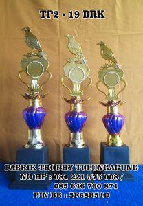 tp2-19brk- Pabrik Trophy Ana