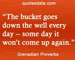 The bucket goes down the well every day - some day it won't come up again.  - Popular Grenadian Proverbs #grenada #caribbean #quotes