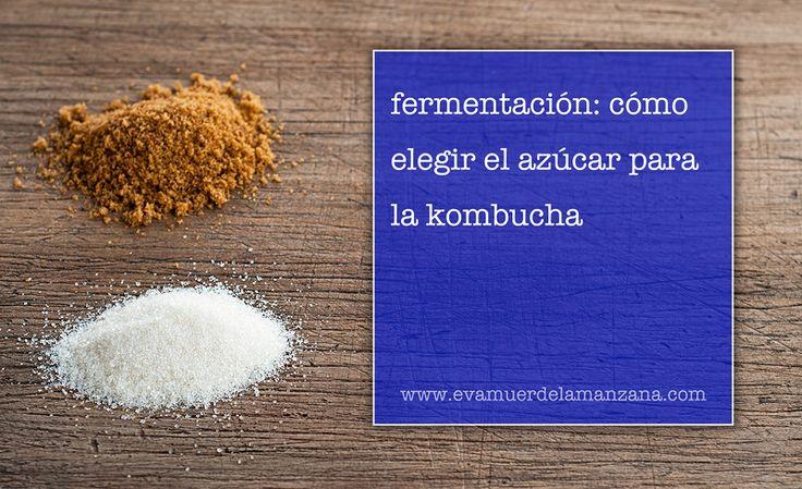 Fermentación: Cómo elegir el azúcar para la kombucha