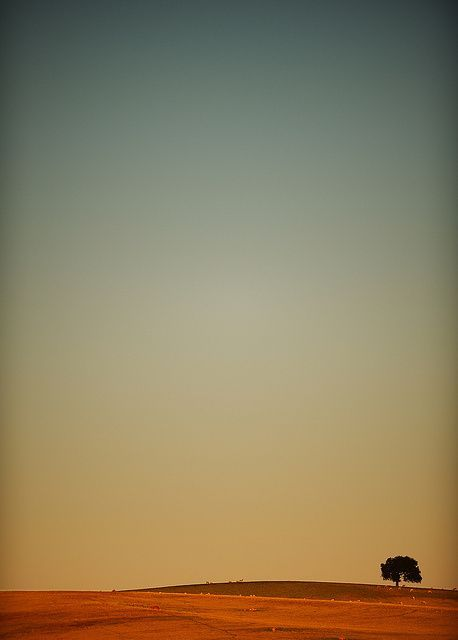 1219 best sounds of silence images on pinterest for Minimal art landscape