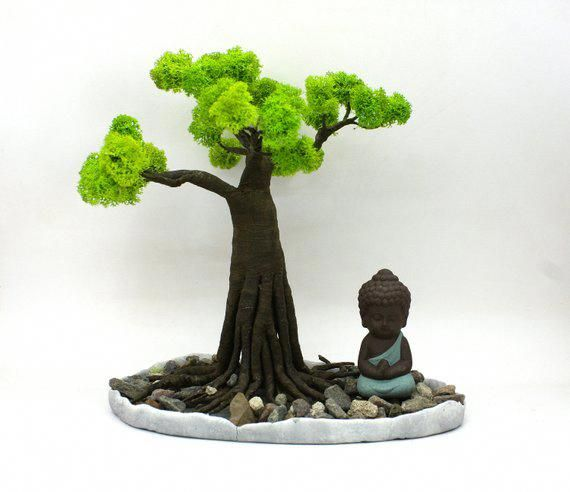 Containergarden Mini Zen Garden Zen Garden Bonsai Tree