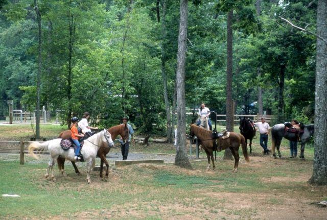 Uwharrie National Forest Nc Hiking Horseback Riding