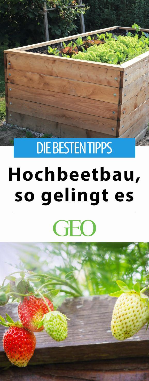 Hochbeet selber bauen: Tipps für den Garten