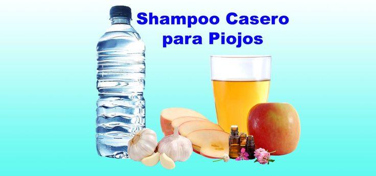 INCREÍBLE!!! ELIMINA LOS PIOJOS y LIENDRES YA!!!>>>Cómo hacer un Shampoo para Piojos y liendres con Remedios Caseros? El champoo para piojos y similares son productos pediculicidas, eso q…