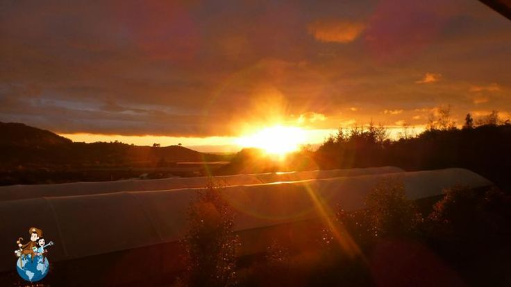 Sunshine in Motueka (New Zealand)