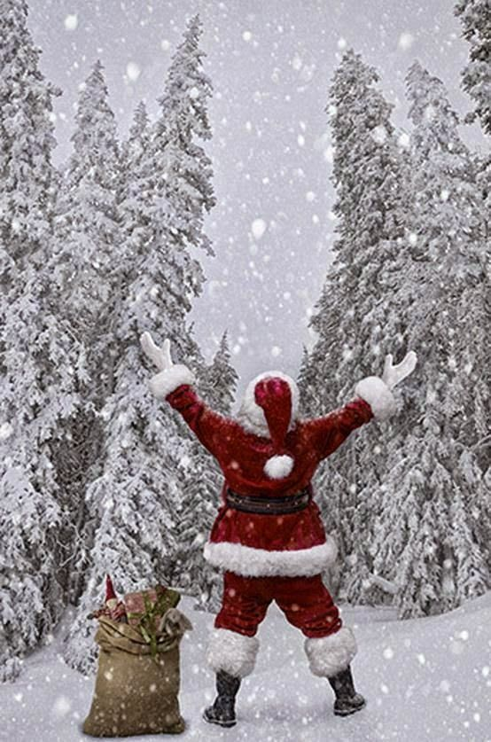 Let It Snow. Santa in a snowy, pine forest under the stars