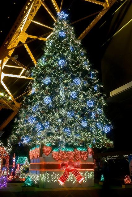 Chrismas Tree! (Tokyo Tower, Japan)