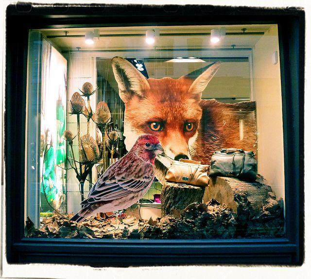 Window Display Shopping in London