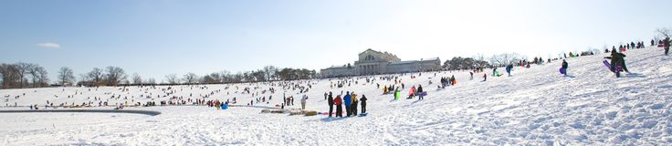 Art Hill in Forest Park - great place to sled!