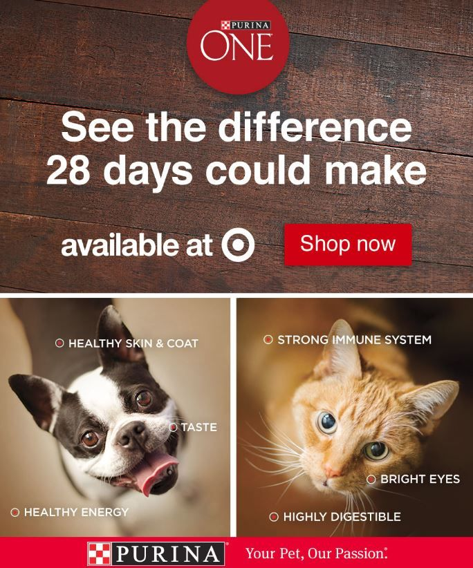 Save On Purina One Dry Dog Food 10 Off 40 At Target Exp 10 6