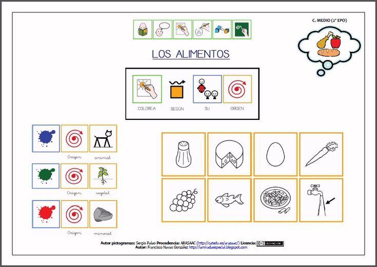 Alimentos de origen animal vegetal y mineral para colore - Imagui