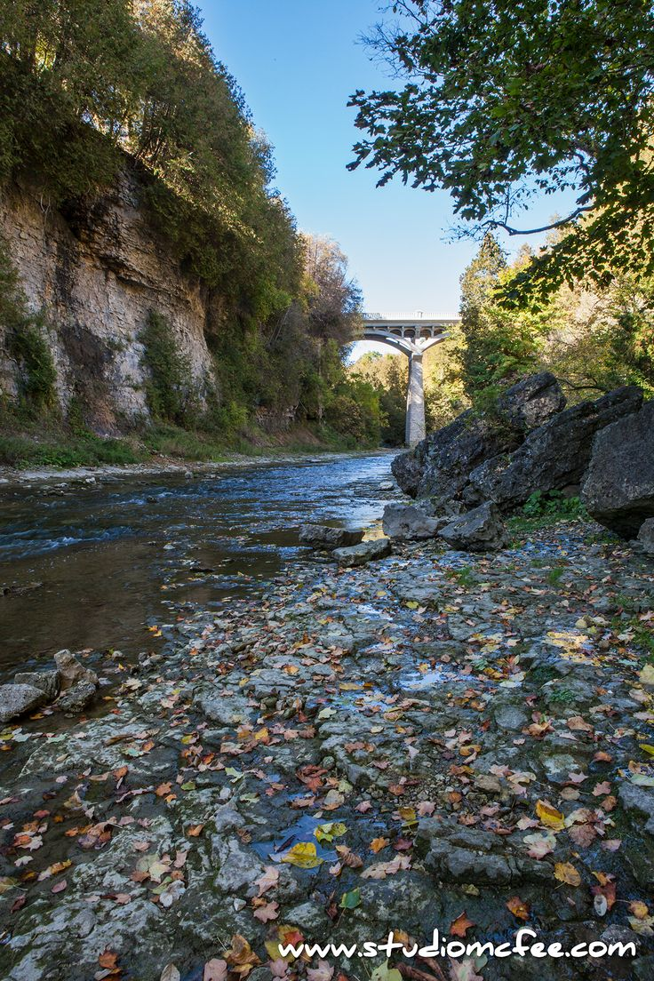 'Autumn in the Gorge' - in the Elora Gorge, Elora ON