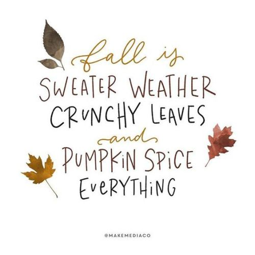 Fall Quotes   Fall Is Sweater Weather, Crunchy Leaves And Pumpkin Spice  Everything!