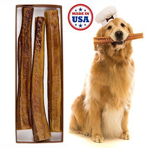 Bully sticks for dogs ~ health benefits and risks ~ bull pizzle