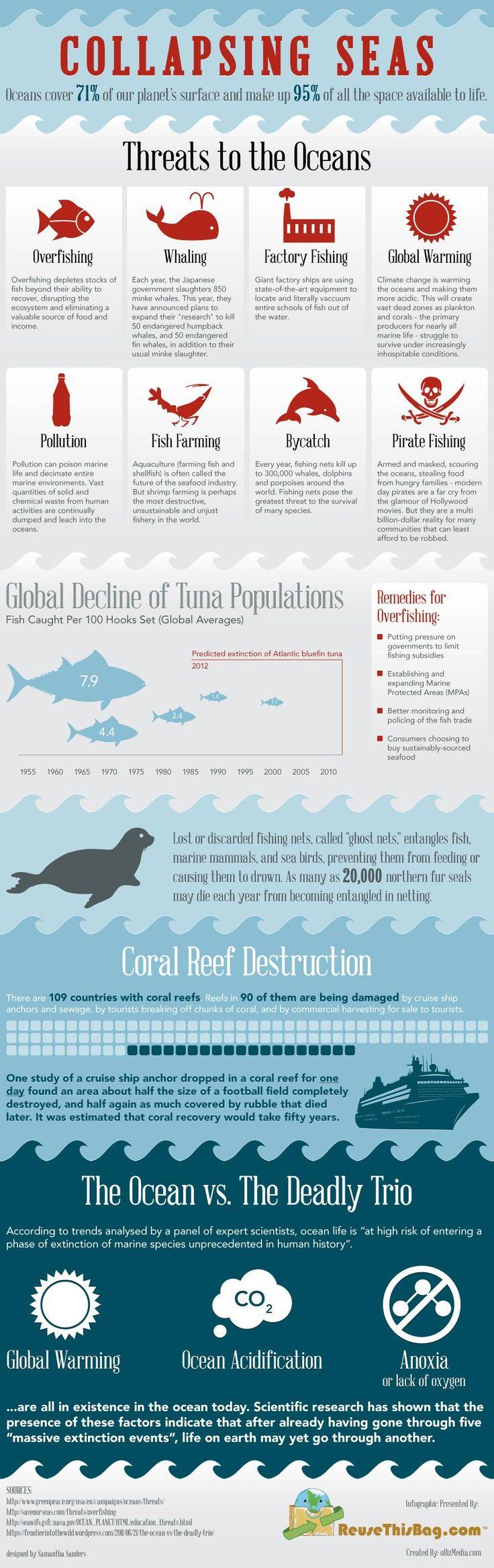 ¿Por qué nuestros mares están colapsando [Infografía] | MNN - Mother Nature Network